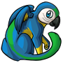 macaw_3.png