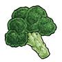 broccoli_green.jpg