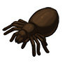 dark_chocolate_spider.jpg